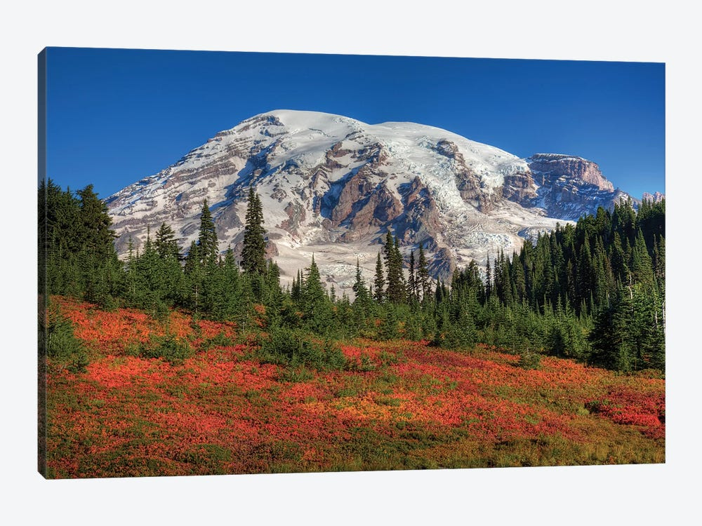 Snow-Covered Mount Rainier With An Autumn Landscape In The Foreground, Mount Rainier National Park, Washington, USA by Jamie & Judy Wild 1-piece Canvas Artwork