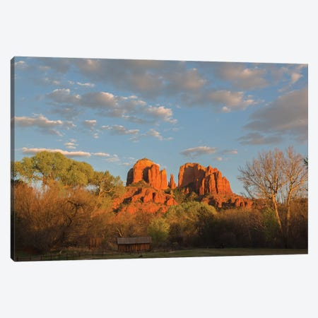 Arizona, Sedona, Crescent Moon Recreation Area, Red Rock Crossing, Cathedral Rock Canvas Print #JJW23} by Jamie & Judy Wild Canvas Print