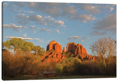 Arizona, Sedona, Crescent Moon Recreation Area, Red Rock Crossing, Cathedral Rock Canvas Art Print
