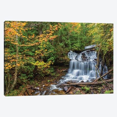 Michigan, Munising. Wagner Falls Canvas Print #JJW25} by Jamie & Judy Wild Canvas Art