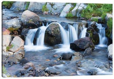 Washington State, Mount Rainier National Park, Edith Creek Canvas Art Print