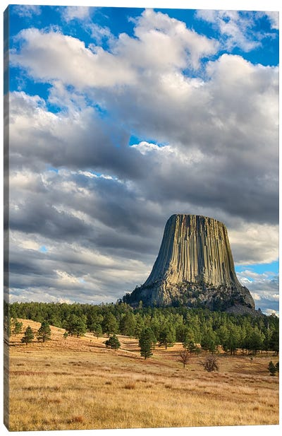 Wyoming, Devils Tower National Monument, Devils Tower Canvas Art Print