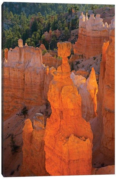 Utah, Bryce Canyon National Park. Thor's Hammer Canvas Art Print