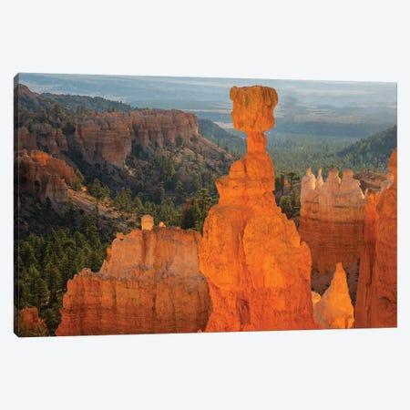 Utah, Bryce Canyon National Park. Thor's Hammer Canvas Print #JJW43} by Jamie & Judy Wild Canvas Print