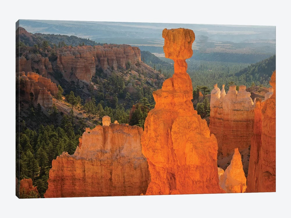 Utah, Bryce Canyon National Park. Thor's Hammer by Jamie & Judy Wild 1-piece Canvas Print
