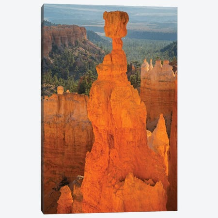 Utah, Bryce Canyon National Park. Thor's Hammer Canvas Print #JJW44} by Jamie & Judy Wild Canvas Artwork