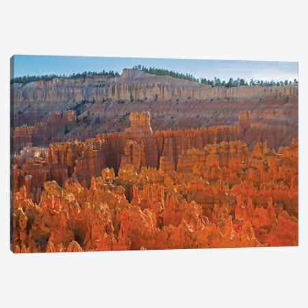 Utah, Bryce Canyon National Park. View of canyon with hoodoos Canvas Print #JJW46} by Jamie & Judy Wild Canvas Art