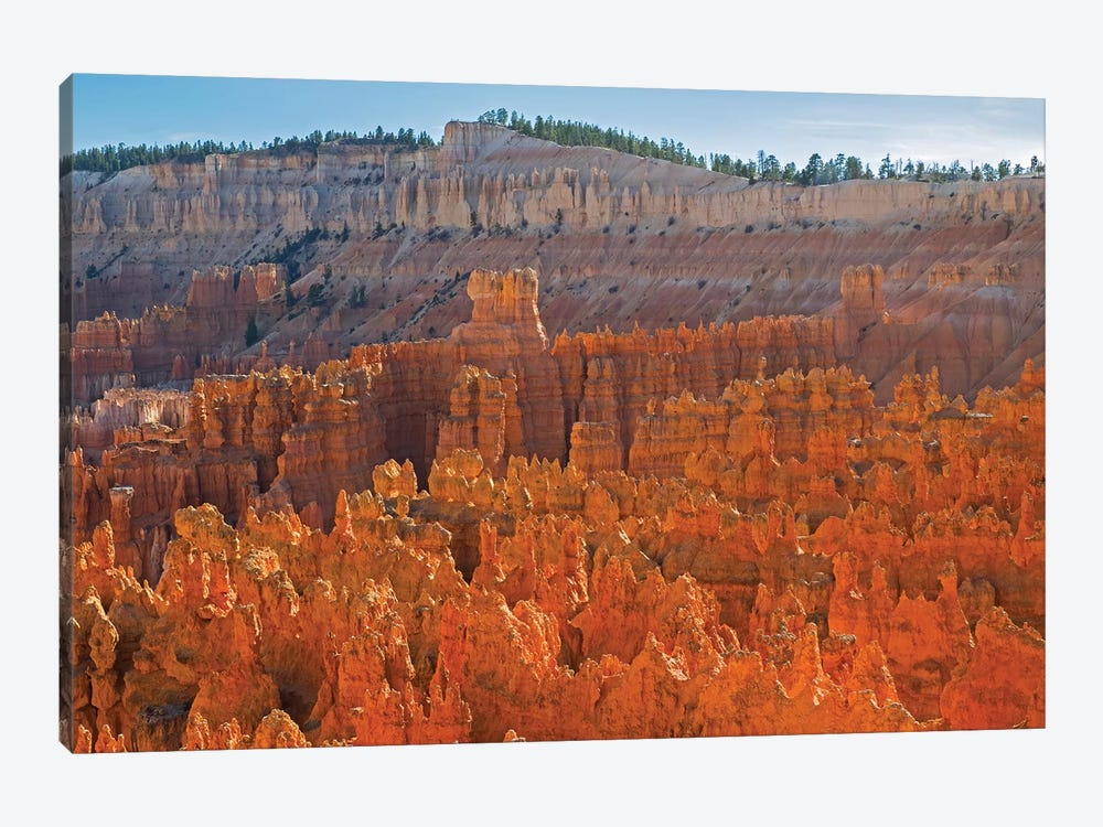 Utah, Bryce Canyon National Park. View of canyon with hoodoos by Jamie & Judy Wild 1-piece Canvas Artwork