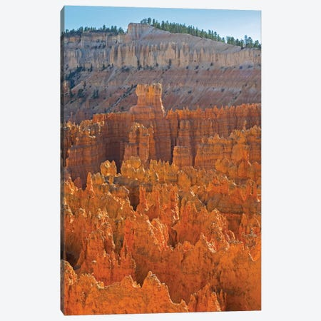 Utah, Bryce Canyon National Park. View of canyon with hoodoos Canvas Print #JJW47} by Jamie & Judy Wild Canvas Art