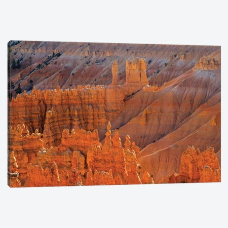 Utah, Bryce Canyon National Park. View of canyon with hoodoos Canvas Print #JJW48} by Jamie & Judy Wild Art Print