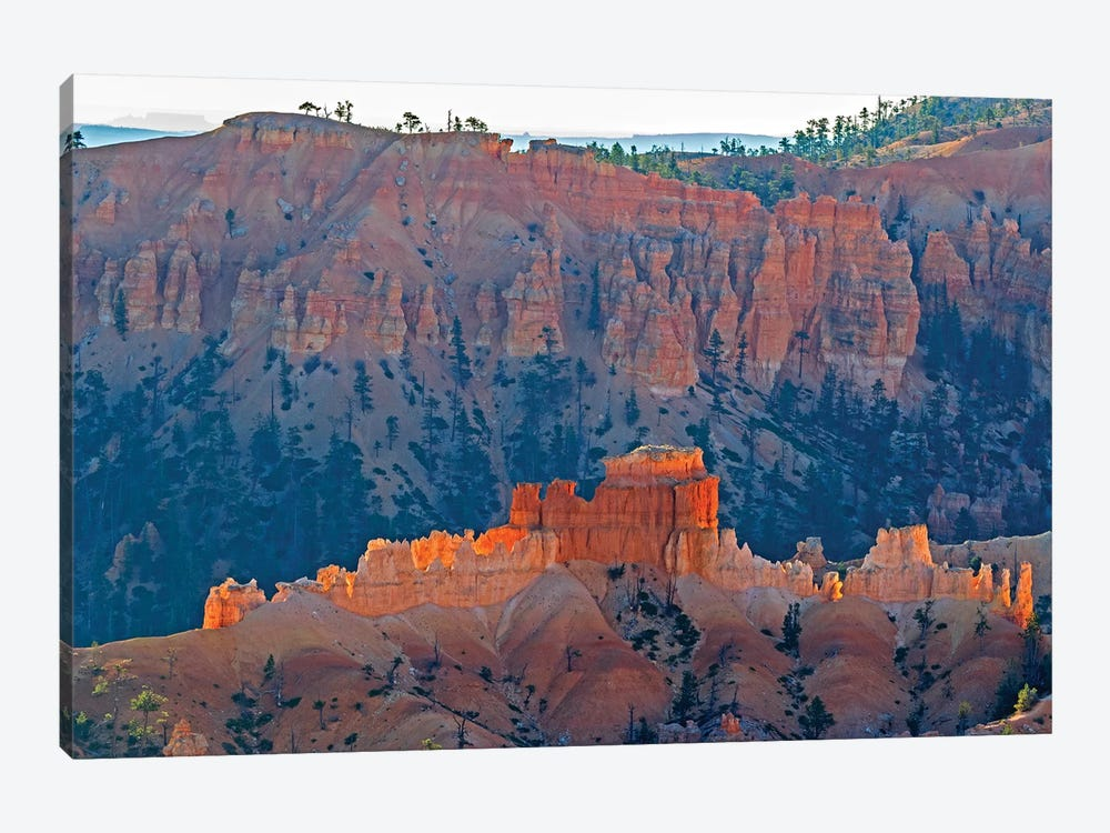 Utah, Bryce Canyon National Park. View of canyon with hoodoos by Jamie & Judy Wild 1-piece Art Print