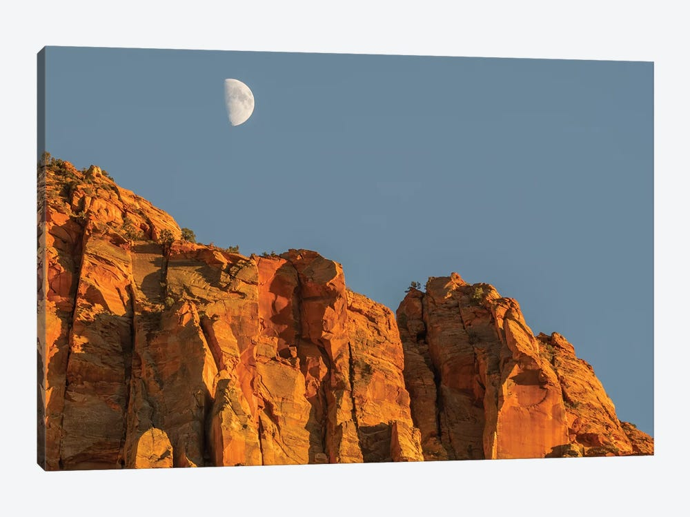 Utah, Zion National Park, Moon over The Watchman by Jamie & Judy Wild 1-piece Canvas Artwork