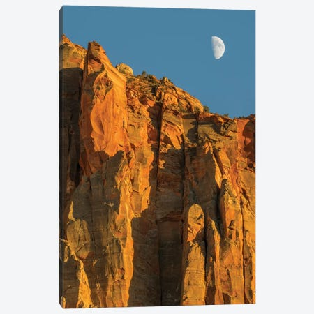 Utah, Zion National Park, Moon over The Watchman Canvas Print #JJW52} by Jamie & Judy Wild Canvas Artwork