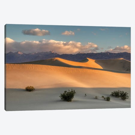 USA, California. Death Valley National Park, Mesquite Flats Sand Dunes, blowing sand. Canvas Print #JJW53} by Jamie & Judy Wild Canvas Wall Art