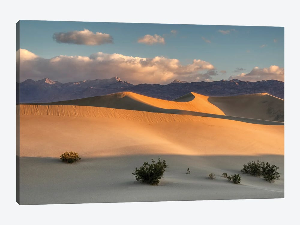 USA, California. Death Valley National Park, Mesquite Flats Sand Dunes, blowing sand. by Jamie & Judy Wild 1-piece Canvas Art