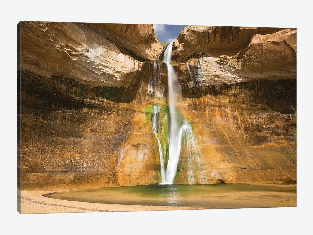 Lower Calf Creek Falls, Grand Staircase-Escalante National Monument, Utah, USA by Jamie & Judy Wild 1-piece Art Print