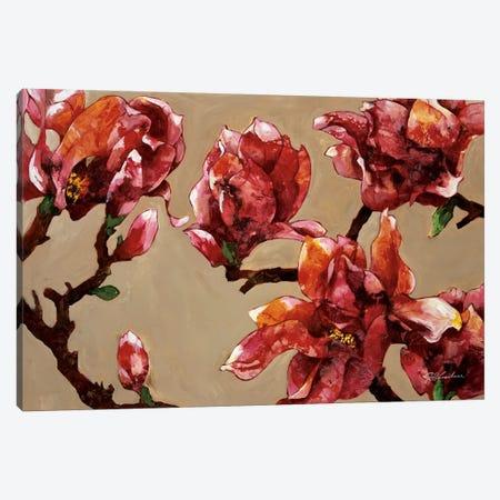 Elegant Magnolia 3-Piece Canvas #JKA1} by Joyce Kamikura Canvas Print