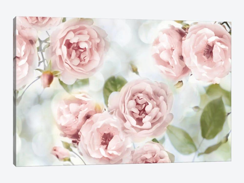 Pink Rose Garden III by Joanna Lane 1-piece Canvas Artwork