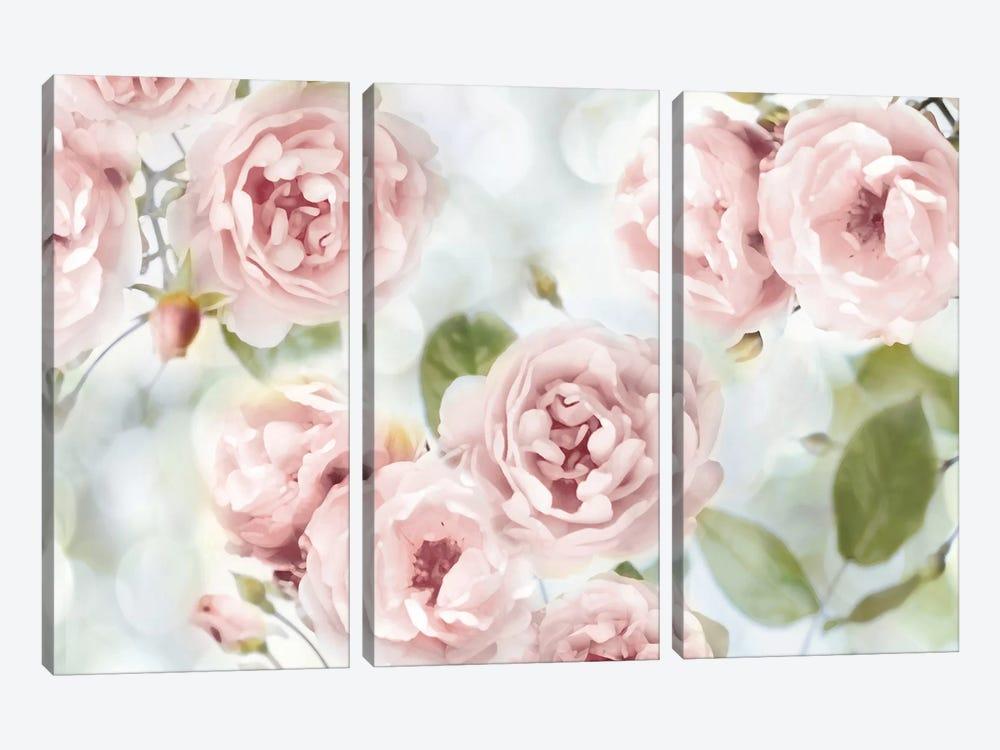 Pink Rose Garden III by Joanna Lane 3-piece Canvas Wall Art