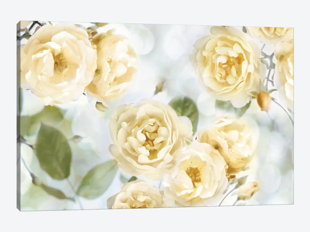 Yellow Rose Garden III by Joanna Lane 1-piece Canvas Art Print