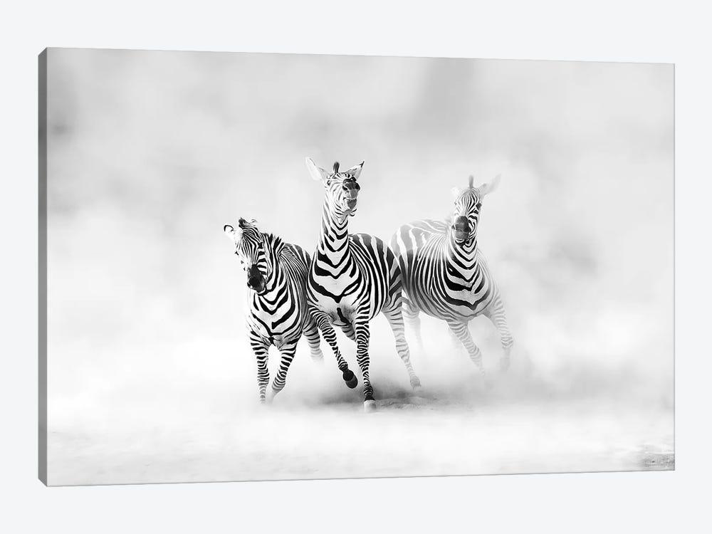 Zebras by Juan Luis Duran 1-piece Canvas Print