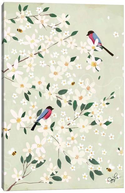 Apple Blossom Bullfinches Canvas Art Print