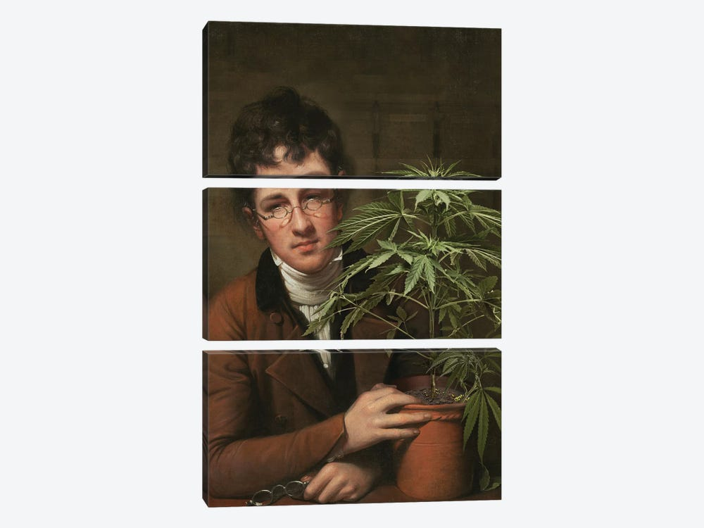 Rubens Peale With A Cannabis by José Luis Guerrero 3-piece Canvas Art