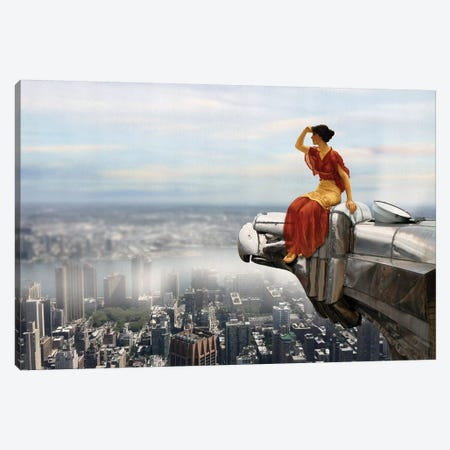 Bird's Eye View Canvas Print #JLG5} by José Luis Guerrero Art Print