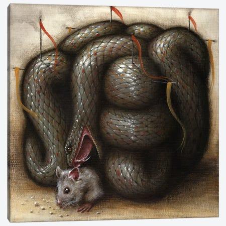Perilous Abode Canvas Print #JLI23} by Jason Limon Canvas Print
