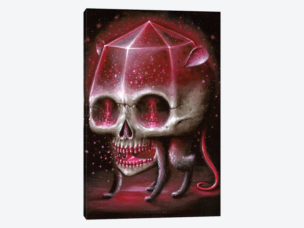 Rubyrat 1-piece Canvas Wall Art