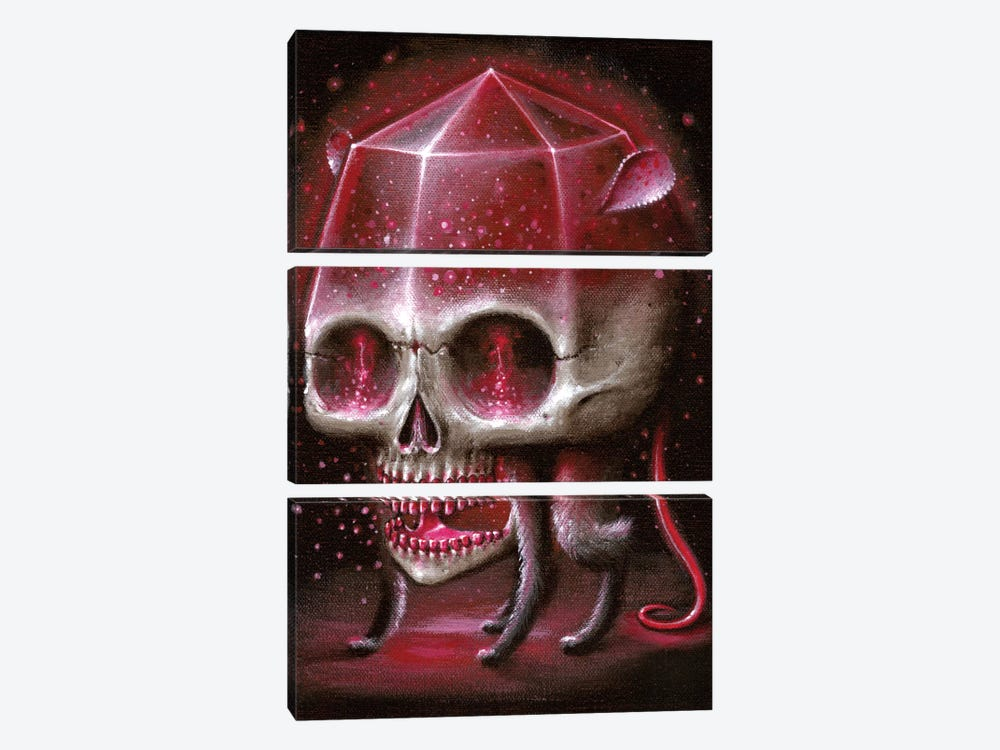 Rubyrat by Jason Limon 3-piece Canvas Art