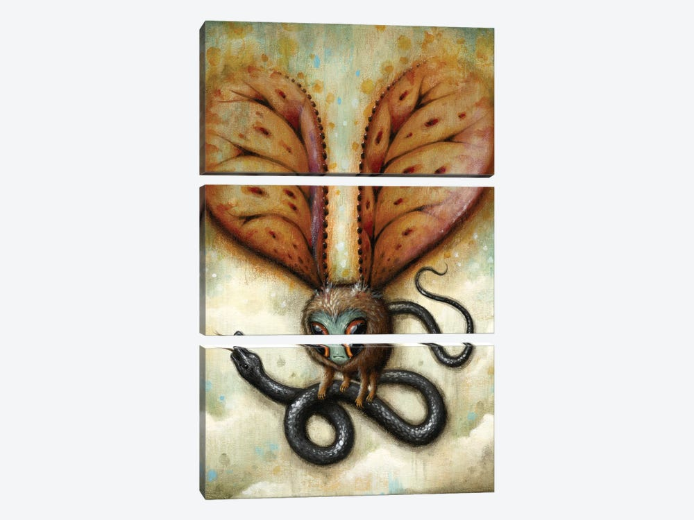 Stop Squirming! by Jason Limon 3-piece Canvas Art Print