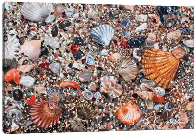 Seashells And Sand Canvas Art Print