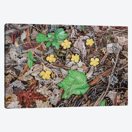 Yellow Flowers Canvas Print #JLK109} by Jerry Lee Kirk Canvas Artwork