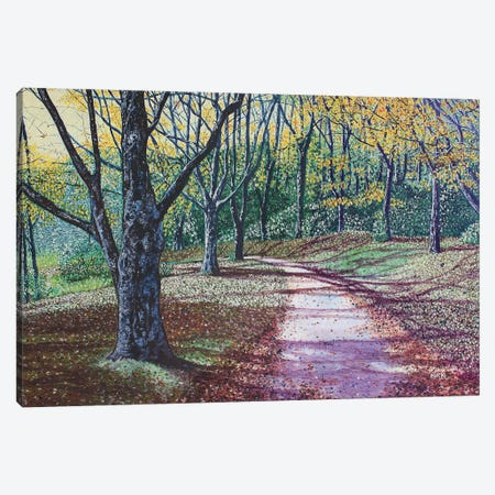 Autumn Walk Around Basslake Canvas Print #JLK10} by Jerry Lee Kirk Canvas Artwork