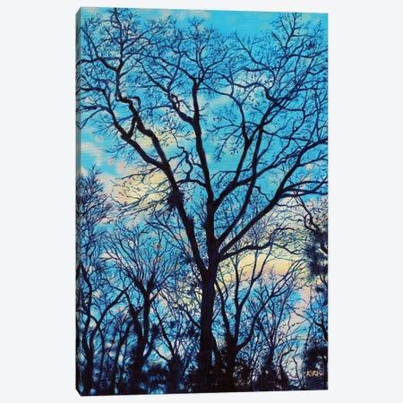 Twilight Trees Canvas Print #JLK116} by Jerry Lee Kirk Canvas Wall Art
