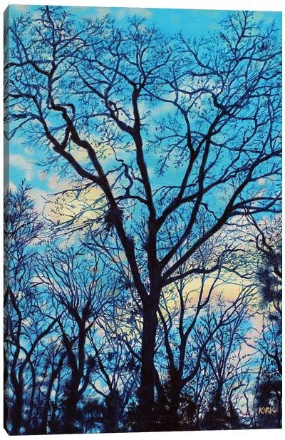 Twilight Trees Canvas Art Print
