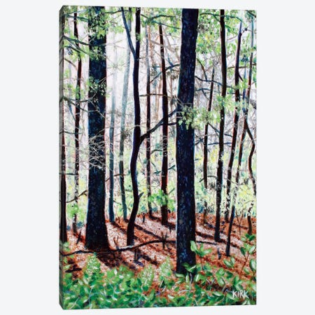 Deep Woods Canvas Print #JLK22} by Jerry Lee Kirk Canvas Print