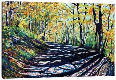 Early Autumn Along The Trail Canvas Art Print