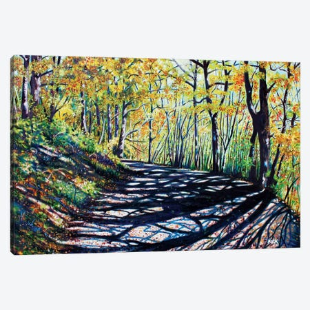 Early Autumn Along The Trail Canvas Print #JLK24} by Jerry Lee Kirk Canvas Art