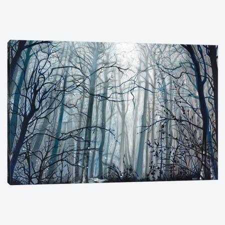 Fog Descending Canvas Print #JLK33} by Jerry Lee Kirk Canvas Wall Art