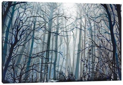 Fog Descending Canvas Art Print