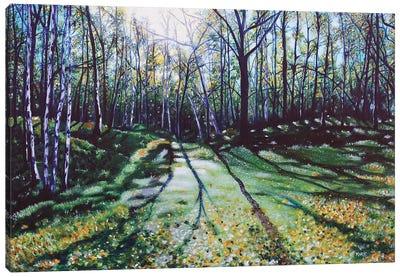 Here Where The Light Shines Bright Canvas Art Print