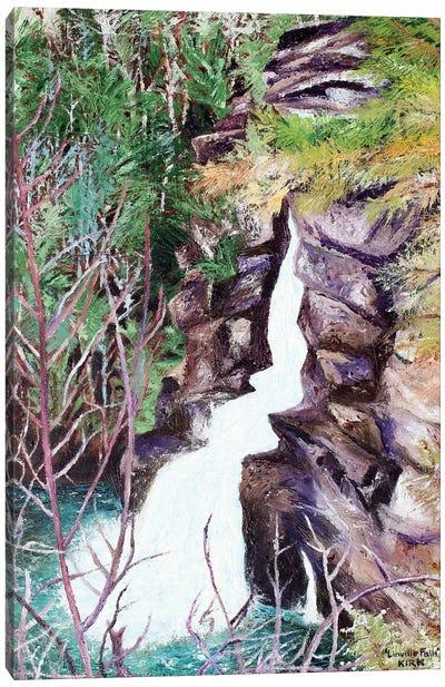 Linville Falls Canvas Art Print