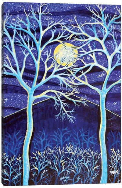 Midnight Mountain Canvas Art Print