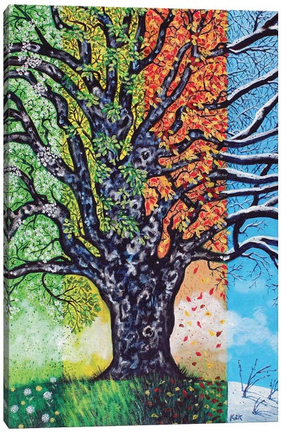 A Tree For All Seasons Canvas Art Print