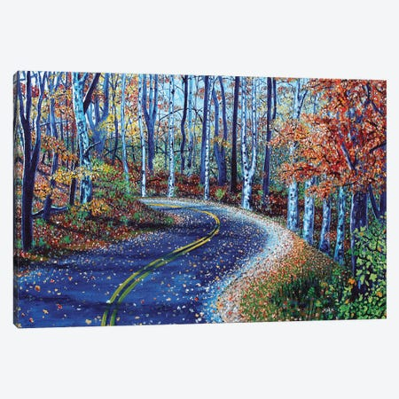 Road To Asheville Canvas Print #JLK53} by Jerry Lee Kirk Canvas Wall Art