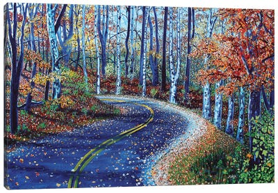 Road To Asheville Canvas Art Print