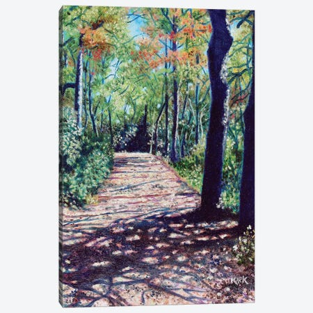 Shadows On The Trail Canvas Print #JLK55} by Jerry Lee Kirk Canvas Print