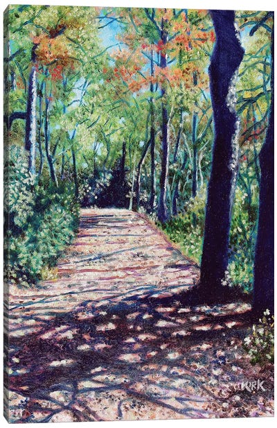 Shadows On The Trail Canvas Art Print
